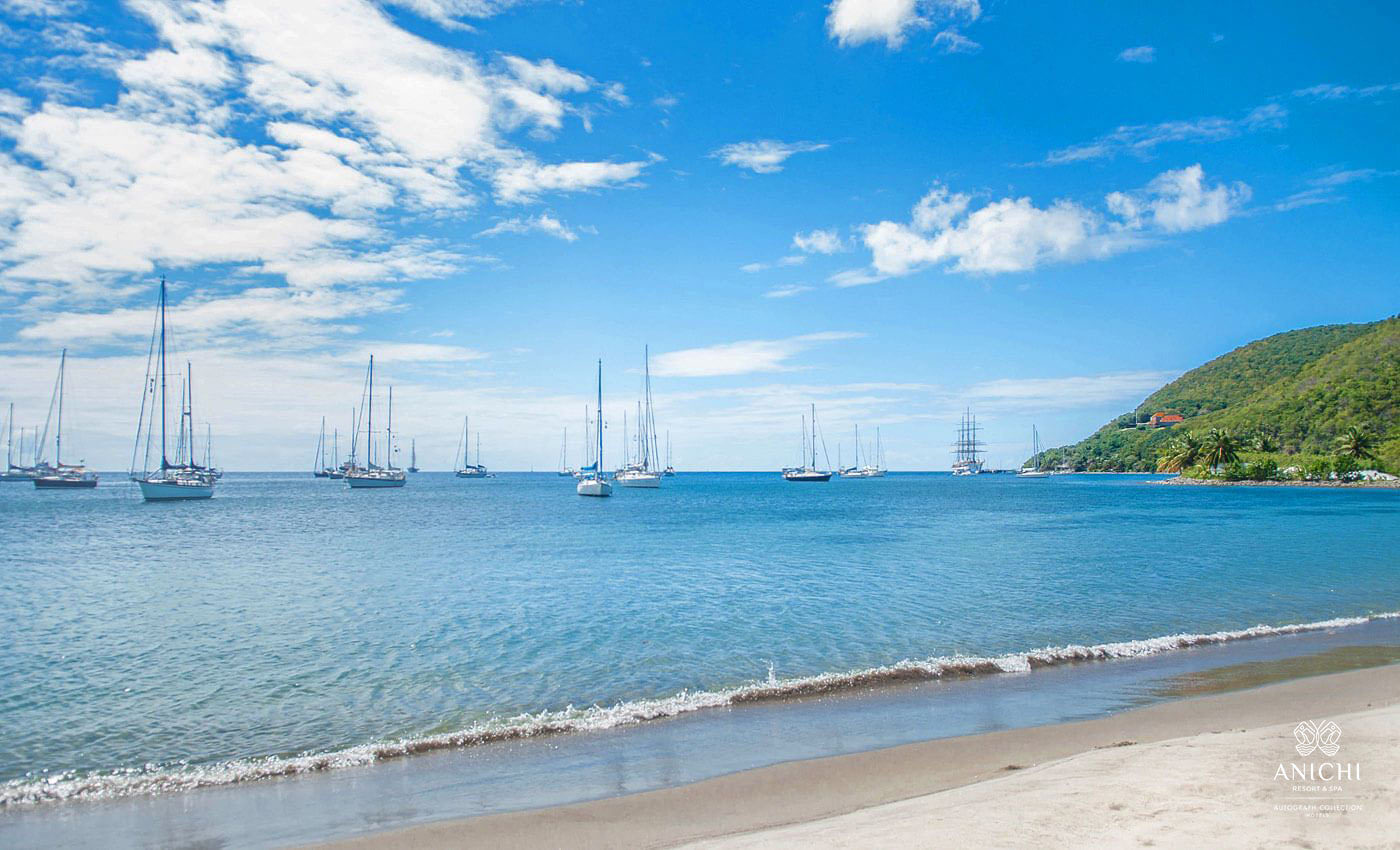Purple Turtle Beach - Dominica Image Gallery - Anichi Resort & Spa