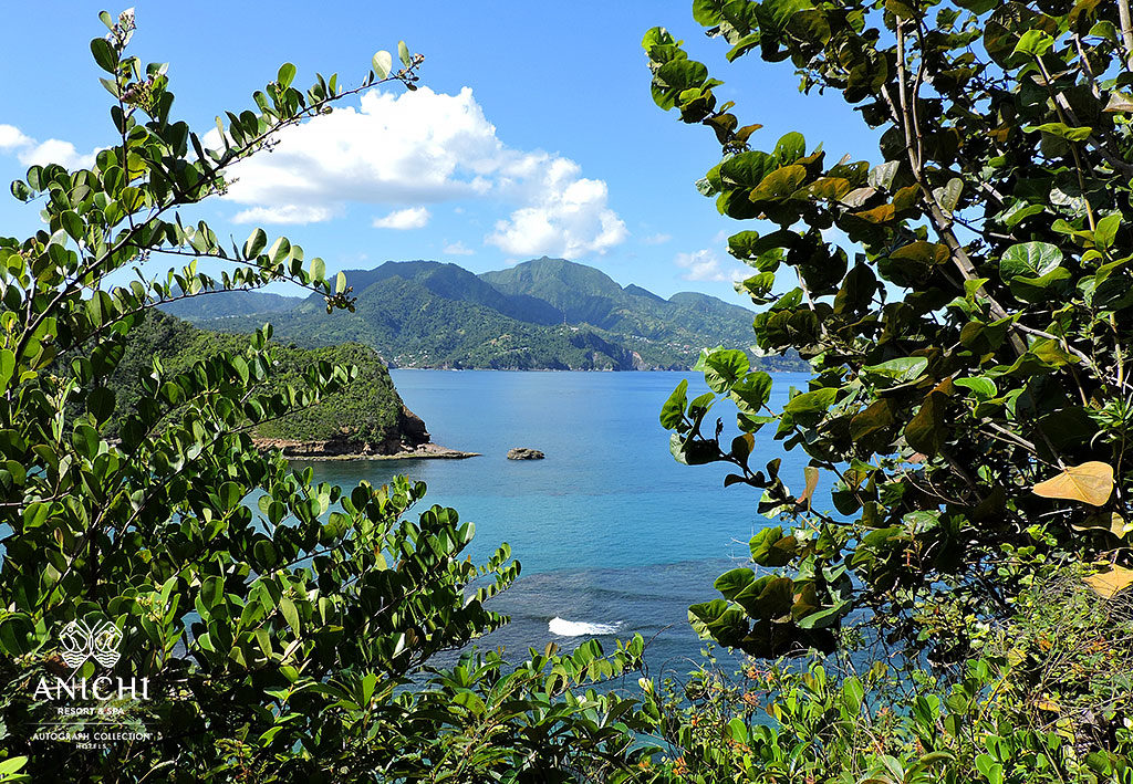 Best place to travel in 2020: North  View of the Dominica