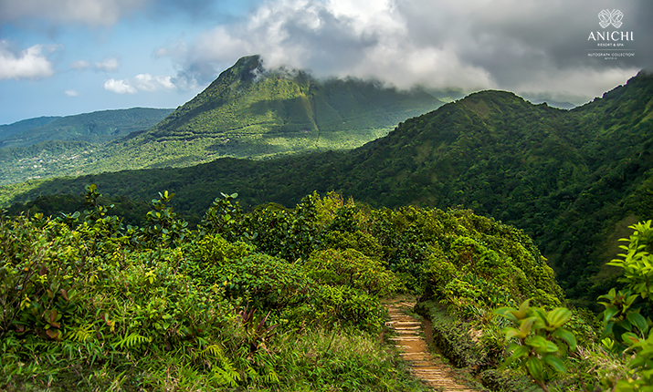 The World's Best Place to Visit in 2021: Add Dominica to Your Bucket List!
